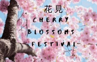 Cherry Blossoms Festival | FAIR Inc