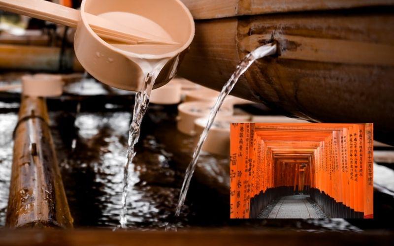 The Dawn of Japanese Hygiene | Fair Inc